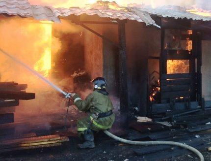 Cемилетний парень спас полуторагодовалых сестренку ибрата напожаре вШелеховском районе
