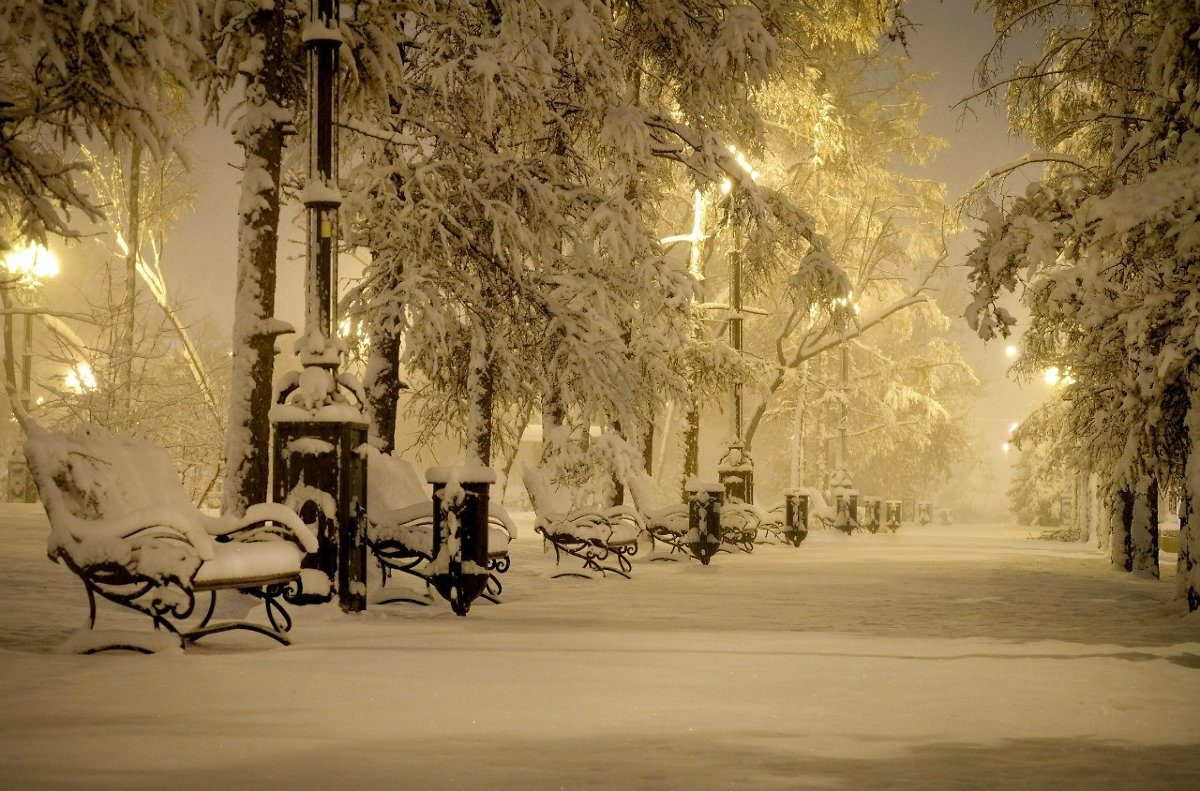 картинки снежность в городе волками для