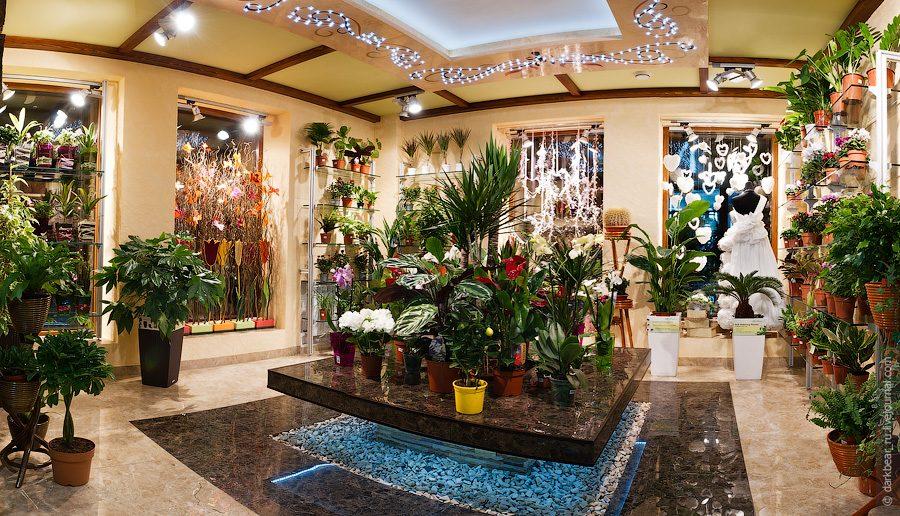 Оазис магазин цветов, магазины